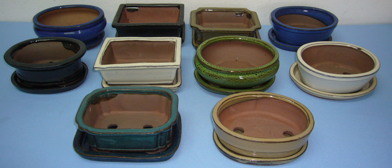 All shapes and all sizes in Glazed and Unglazed Bonsai Pots. We also have  Lucky Bamboo Pots and Orchid Pots